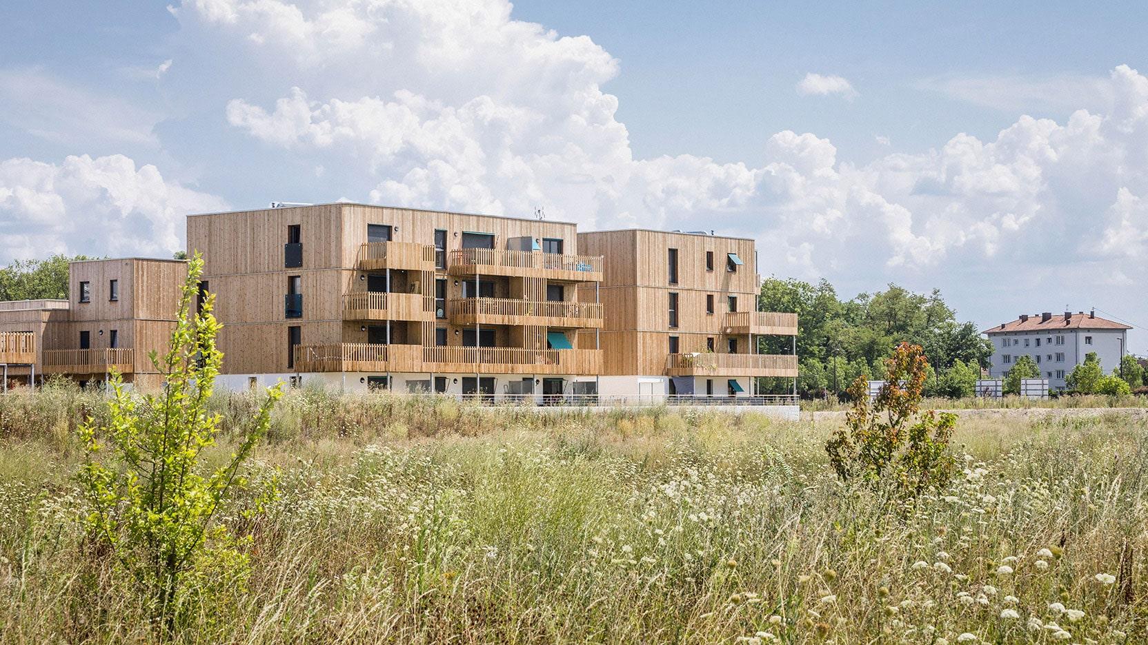 Maisons individuelles groupées en bois